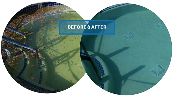 BEFORE & AFTER Pool Maintenance